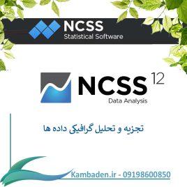 Crack Data Analysis NCSS 12