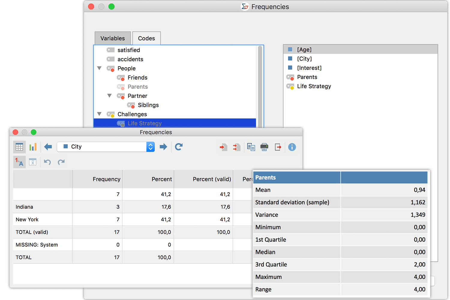Descriptive Statistics - Maxqda Analytics Pro 2020
