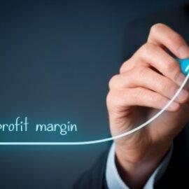 MODDE Pro profit margin